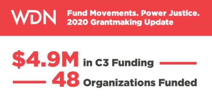 WDN 2020 grantmaking
