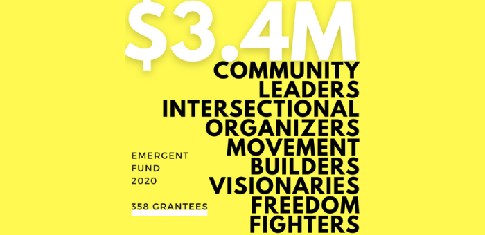 """an infographic that reads """"3.4 million community leaders, intersectional organizers, movement builders, visionaries, freedom fighters"""